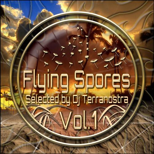VA - Flying Spores Vol1